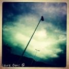 iphonegrafia_17.jpg