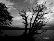 086_Lago_di_Montorfano.jpg
