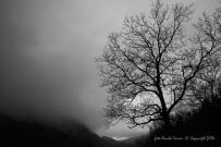 Terz_Alpe_Prim_Alpe_060.JPG