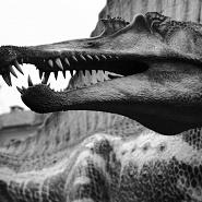 Spinosauro (Spinosaurus Stromer, 1915)