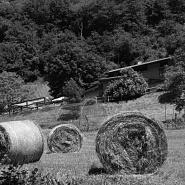 Ai Grassi e Lunghi in Valsassina