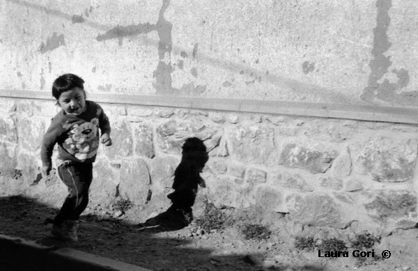 Girovagando dalle Ande al Chaco