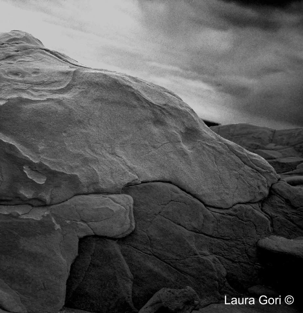 © Laura Gori - lauragori.it
